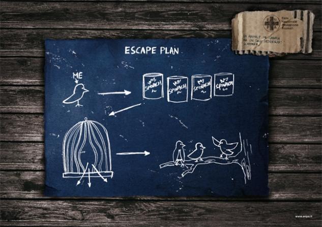 escape plan2