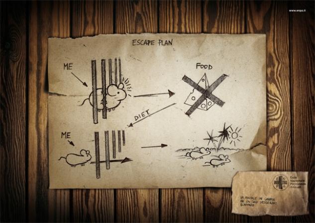 escape plan3