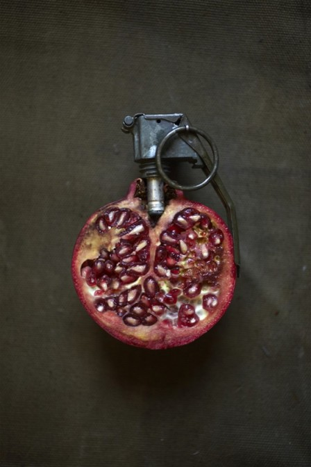 strange-fruits-sarah-illenberger-8-560x840