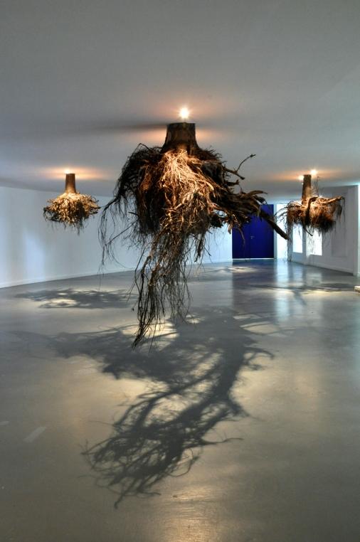trees museum4