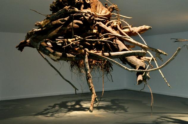 trees museum5