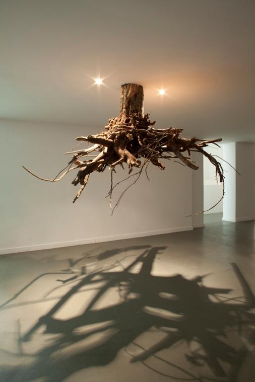 trees museum6
