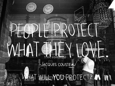 protect what they love
