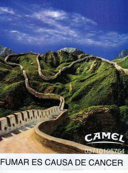 Creative-Camel8