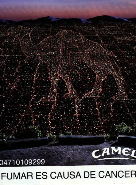 Creative-Camel9