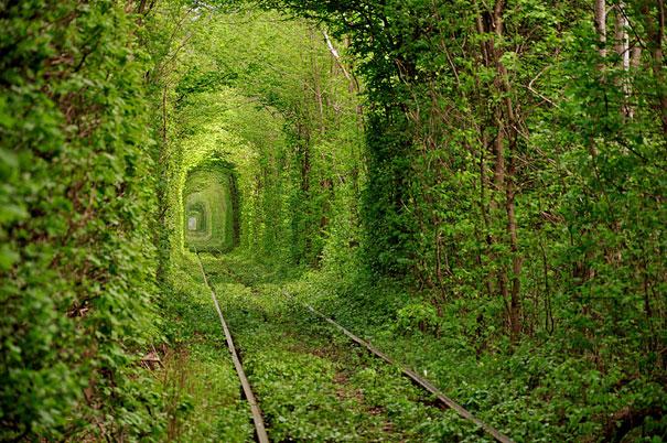 tunnel-of-love-ukraine on the trendy road1