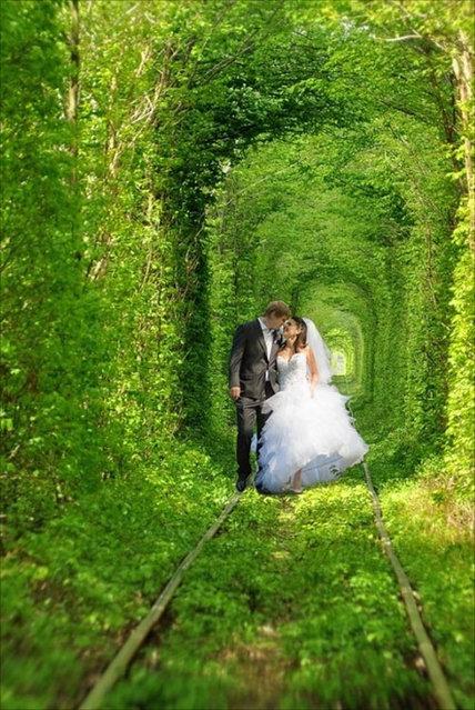 tunnel-of-love-ukraine on the trendy road2