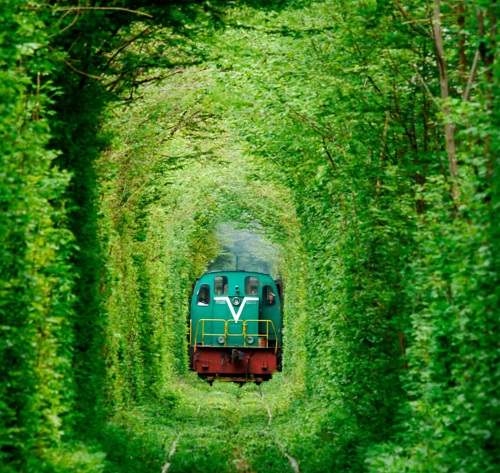 tunnel-of-love-ukraine on the trendy road3