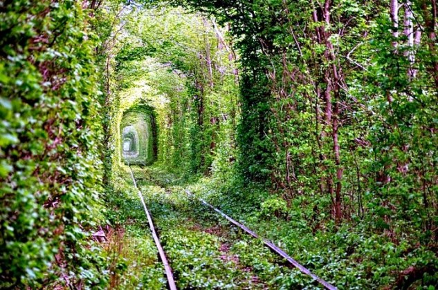 tunnel-of-love-ukraine on the trendy road4
