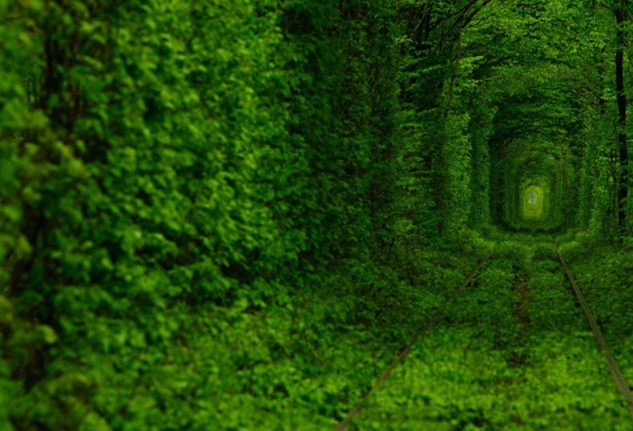tunnel-of-love-ukraine on the trendy road6