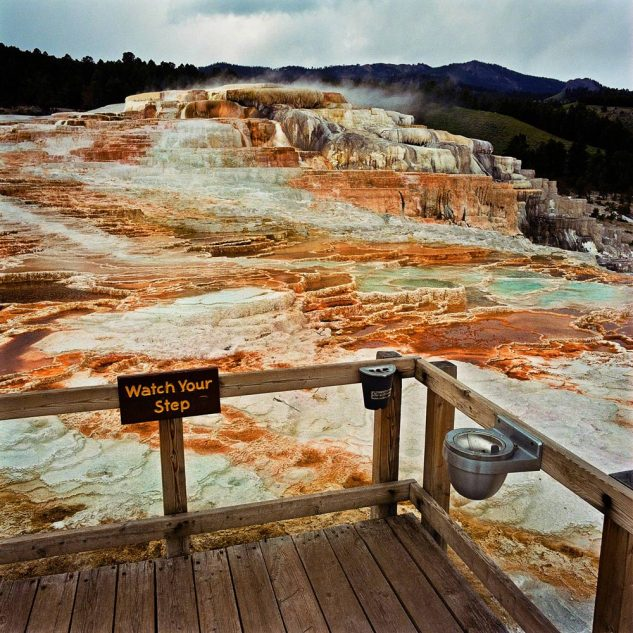 Viewing-Platform-at-Minervas-Terrace-Yellowstone-National-Park-WY-19801