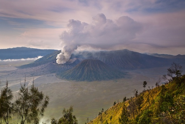 helminadiajaburmountbromo8