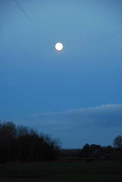 moon_kl